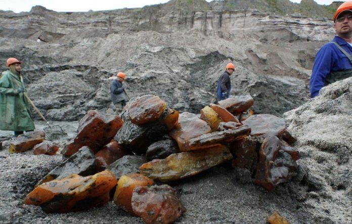 Слив информации о судимости Романа Иванисова может быть связан с переделом влияния в добыче янтаря